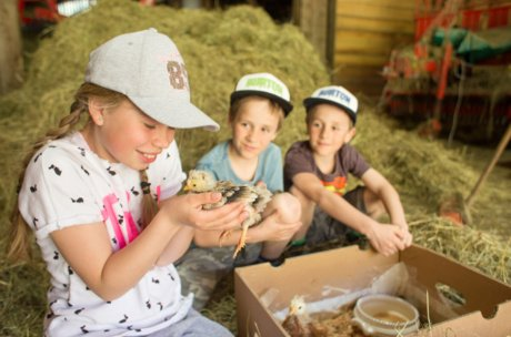 Kids are learning about nature and farm animals | © Faistauer Photography