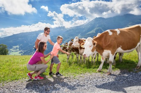 Family with cows in Zell am See-Kaprun | © Maiskogel Betriebs AG