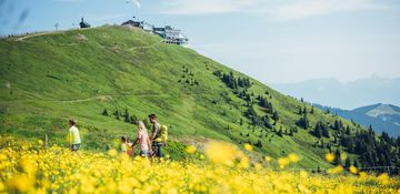 Enjoy the nature while hiking with your family on Schmittenhöhe | © Zell am See-Kaprun Tourismus