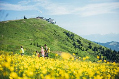 Enjoy the nature while hiking with your family on Schmittenhöhe   © Zell am See-Kaprun Tourismus