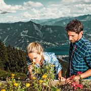 Unique hiking experience between wild-grown herbs | © Schmittenhöhe