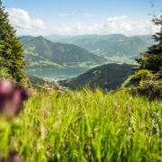 Hiking with lake view in Austria | © Zell am See-Kaprun Tourismus